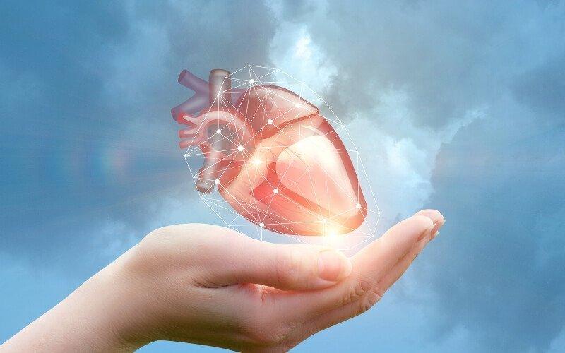 Si prende cura del tuo cuore