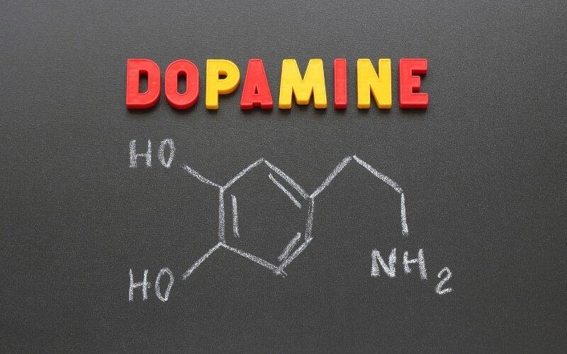 Che cos'è la dopamina?