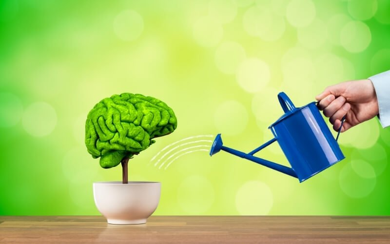 Migliora le funzioni cognitive