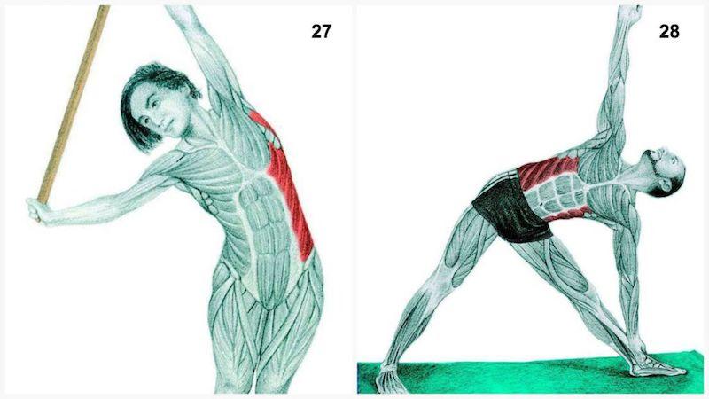 stretching addominali obliqui